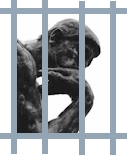 Solitary confinement of responsible living